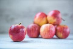 Königliche Gala-Äpfel Stockfotos