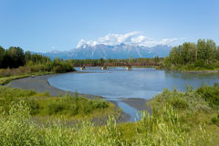 Knik River, Alaska in summer Stock Image
