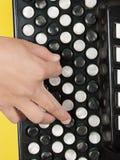 Knipsel met een jongen het spelen harmonika stock fotografie