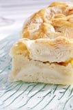 knish πατάτα Στοκ φωτογραφία με δικαίωμα ελεύθερης χρήσης
