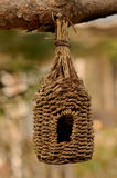 Knitted bird house at the branch of pine tree. Organic knitting bird house at the brach of the tree Stock Images