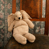 Knitted bunny sitting on an old chair square Stock Image