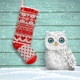 Knitted christmas stocking and cute white owl, illustration Royalty Free Stock Photo