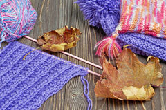 Knitted colorful scarf and hats Stock Image
