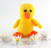 Knitted duckling Royalty Free Stock Images