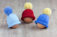Knitted egg warmers Stock Images