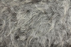 Knitted fabric made ​​of goat down Royalty Free Stock Photo