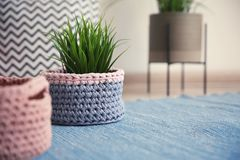 Knitted flowerpot cover with plant on carpet, space for text. Interior element stock images