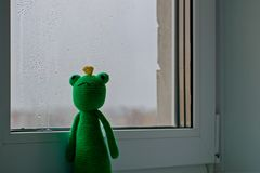 Knitted frog on on the window. Handmade toy - green frog for baby. royalty free stock images