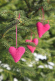 Knitted hearts hanging on a tree branch Royalty Free Stock Image