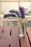 Knitted lavender flower Stock Photo