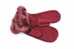 Knitted mittens with fur isolated on white. Background Royalty Free Stock Photography