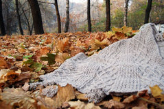 Knitted plaid with autumn leaves. Knitted poncho with autumn maple leaves royalty free stock photo