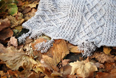 Knitted plaid with autumn leaves. Knitted poncho with autumn maple leaves royalty free stock photos