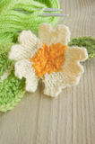 Knitted primrose spring woollen flower. This a macro image of a wild primrose flower knitted by my mother in law and photographed with her permission. Focus on royalty free stock images
