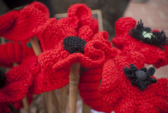 Knitted Red poppy anzac day remembrance day Royalty Free Stock Photos