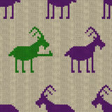 Knitted seamless pattern with goat Royalty Free Stock Image