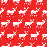 Knitted sweater with deer seamless pattern. Christmas background Royalty Free Stock Image