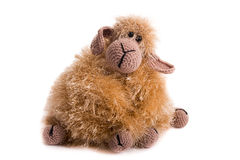 Knitted toy sheep Stock Images