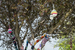 Knitted tree. With small bag hanging  in a public park on a sunny day Stock Photos