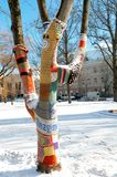 Knitted Tree Stock Photography