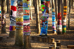 Knitted trees in the park Stock Images