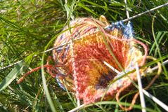 Knitted tricolor pattern, yarn and 5 needles Stock Photos