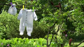 Knitted white baby clothes body and hat hang on tree branch in garden. Static closeup shot stock footage