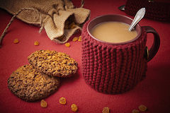 Knitted woolen mug with cookies Stock Image