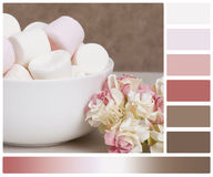 Knitting Accessories. Yarn Balls. Palette With. Complimentary Colour Swatches Royalty Free Stock Photo