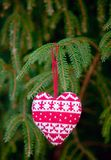 Knitting heart on fir-tree branch Stock Image
