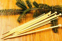 Knitting needles and yew branch Stock Images