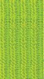 Knitting seamless border Stock Image