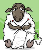 Knitting sheep cartoon illustration Stock Photos