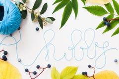 Knitting thread word hobby in leaves frame Stock Images