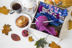 Knitting wool and needles with autumn lantern, tea cup,honey rol Royalty Free Stock Photography