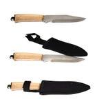 Kniv med skidan Fotografering för Bildbyråer