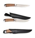 Kniv med skidan Arkivbild