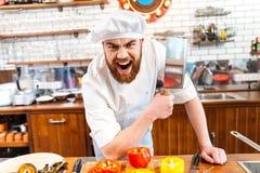 Kniv och ropa för köttyxa för kött för ilsken skäggig kockkock hållande Royaltyfri Fotografi