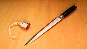 Kniv och salami på trä Royaltyfria Bilder