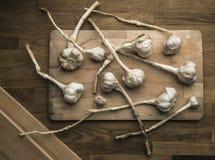 Knoblauch auf einer hölzernen Platte stockbilder