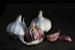 Knoblauch ist für sein scharfes Aroma am meisten benutzt Lizenzfreie Stockfotos
