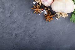 Knoblauch und Gewürze auf schwarzem Hintergrund Lizenzfreies Stockfoto