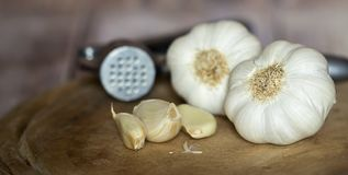 Knoblauch und Nelken, gesunde Ernährung, Gemüsenahrung lizenzfreie stockfotografie