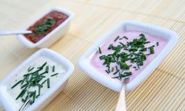 Knoblauch und Tomatensaucen Lizenzfreies Stockfoto