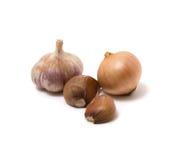 Knoblauch und Zwiebel auf dem weißen Hintergrund Lizenzfreie Stockfotos