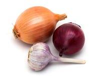 Knoblauch und Zwiebeln auf einem weißen Hintergrund Lizenzfreie Stockfotos