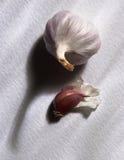 Knoblauchknolle und Nelke auf weißem Hintergrund Stockfoto