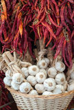 Knoblauchknollen und roter Paprika am Marktstall lizenzfreie stockfotos