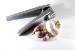 Knoblauchpresse mit Knoblauchknolle und Nelken Lizenzfreies Stockbild